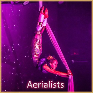 aerialist-icon
